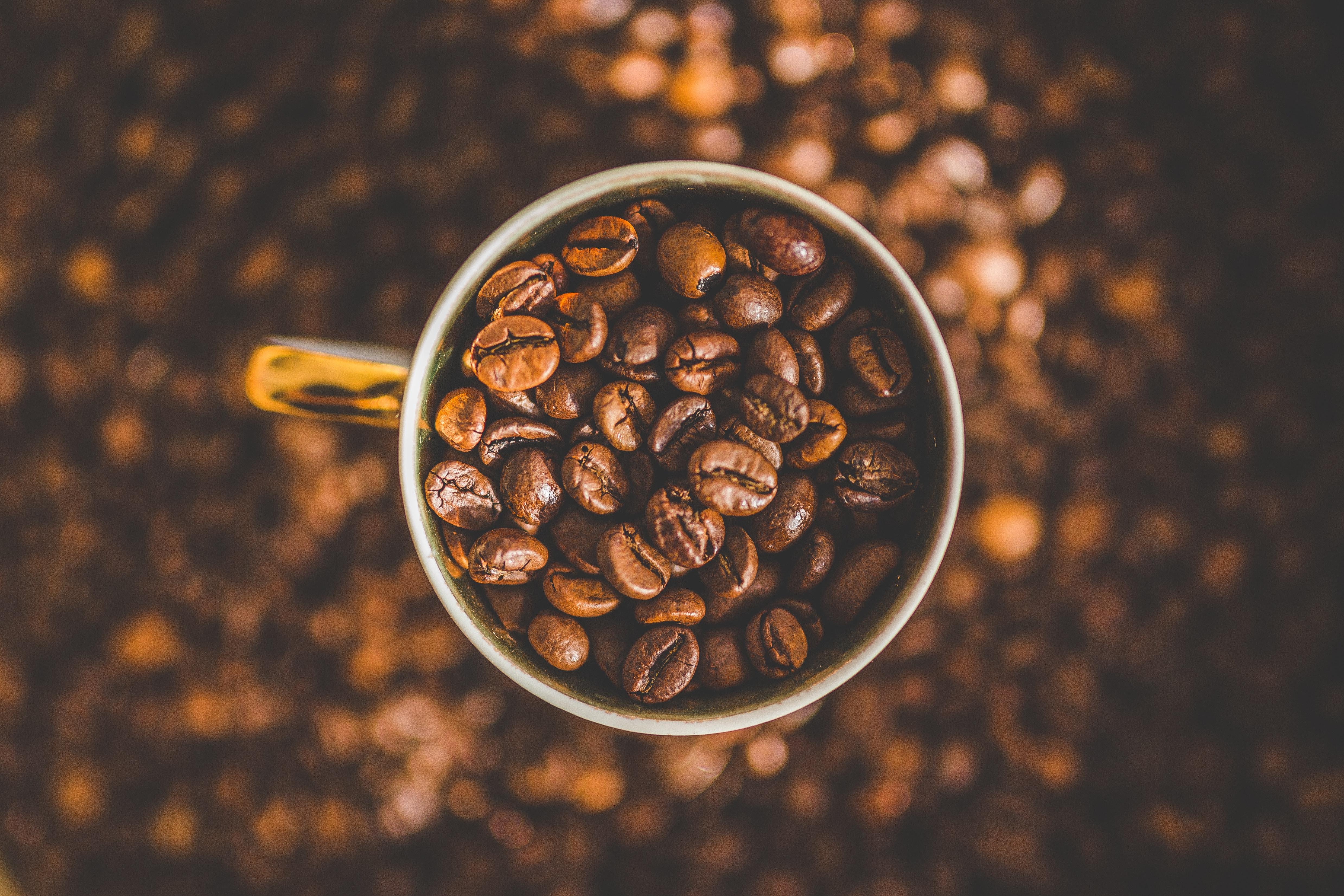 القهوة الكينية
