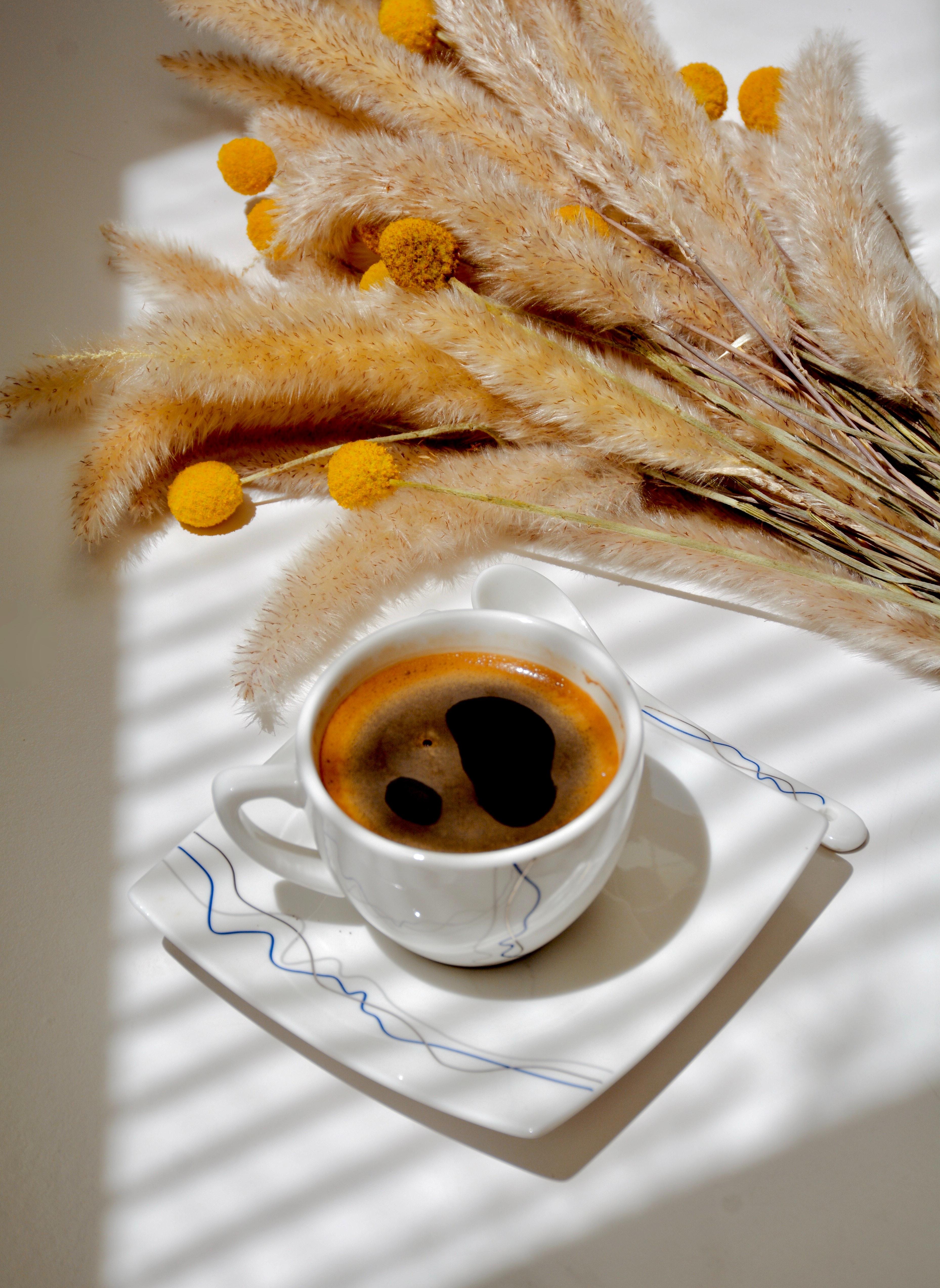 القهوة الكوبية